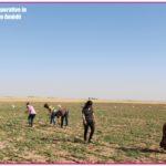 Kurdistan, Rojava, Syria, Cizire, co-operatives, cooperatives, co-operative, cooperative, co-op, co-ops, solidarity, solidarity economy, workers co-op, workers co-operative, workers cooperative, cooperative economy, solidarity economy