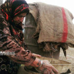 Kurdistan, Rojava, Syria, Cizire, co-operatives, cooperatives, co-operative, cooperative, co-op, co-ops, solidarity, solidarity economy, workers co-op, workers co-operative, workers cooperative, cooperative economy, agriculture, fertiliser, organic, fundraising