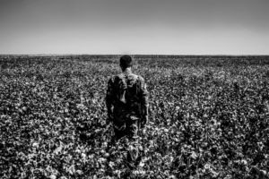 Rojava, field, soldier, Kurdistan, Afrin