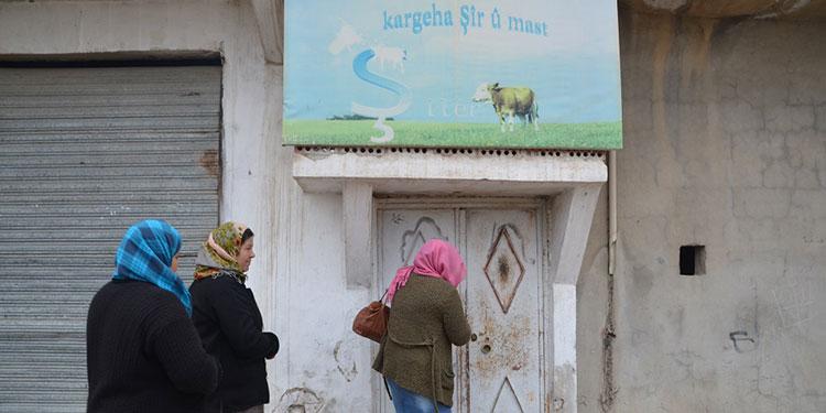 Rojava, Syria, women, feminism, jineologi, economy, cooperatives, coops