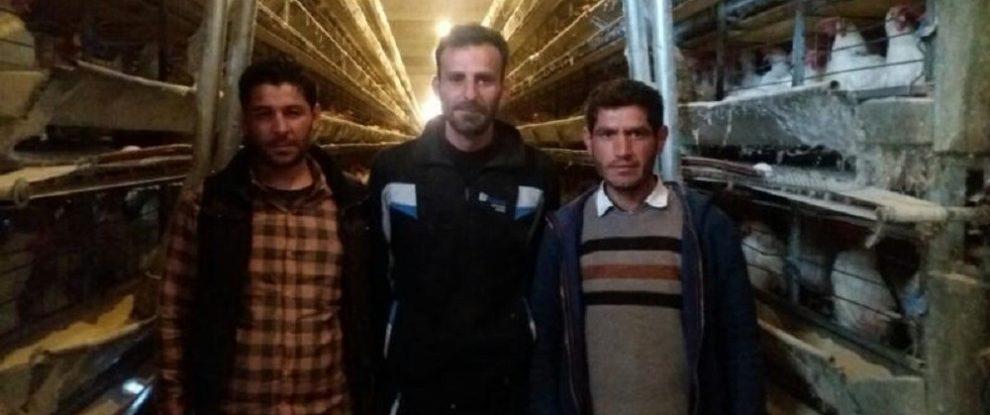 Syria, Manbij, Minbij