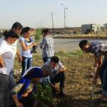 Rojava, Syria, economy